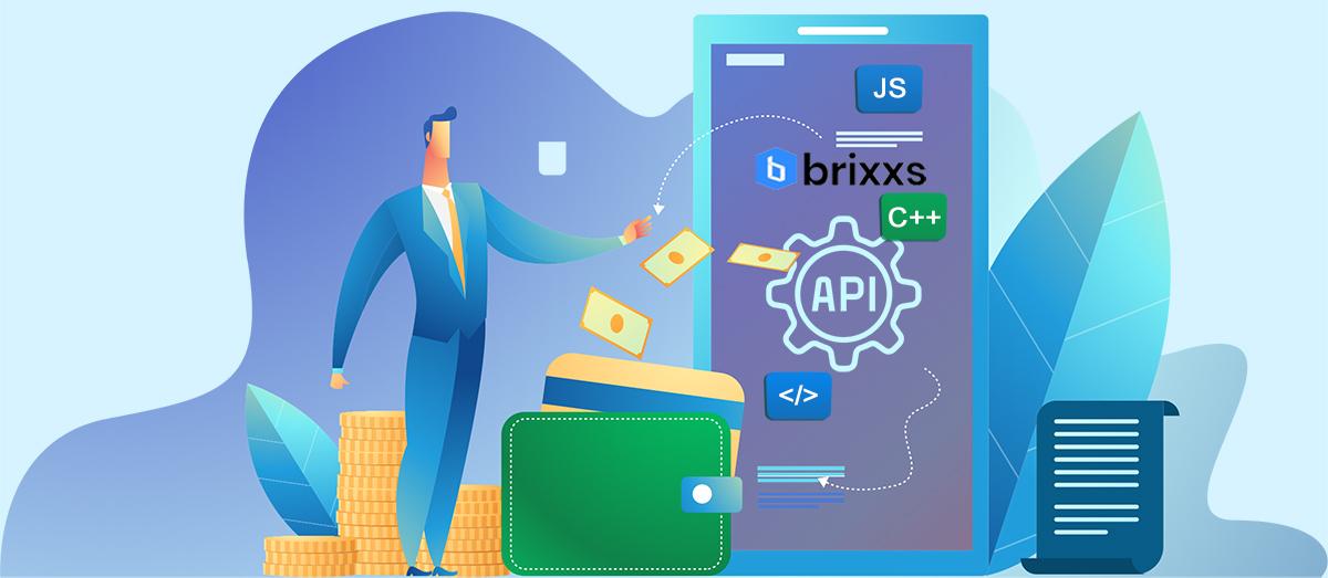 Wat kost een API koppeling